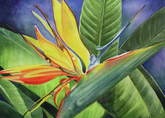 Bird Of Paradise Greeting Card featuring the painting Free Bird by Lorraine Ulen