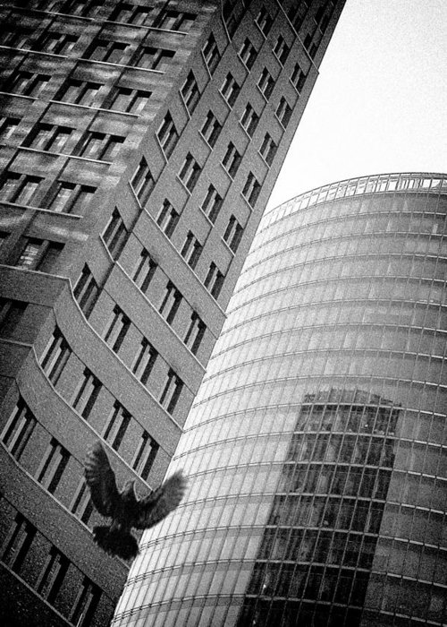 Architecture Greeting Card featuring the photograph Freedom by Ilker Goksen