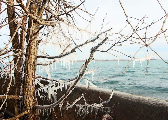 Centre Island Greeting Card featuring the photograph Freezing Rain by Munir Alawi