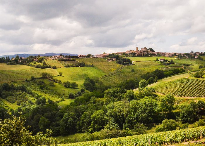 Landscape Greeting Card featuring the photograph French Countryside by Allen Sheffield