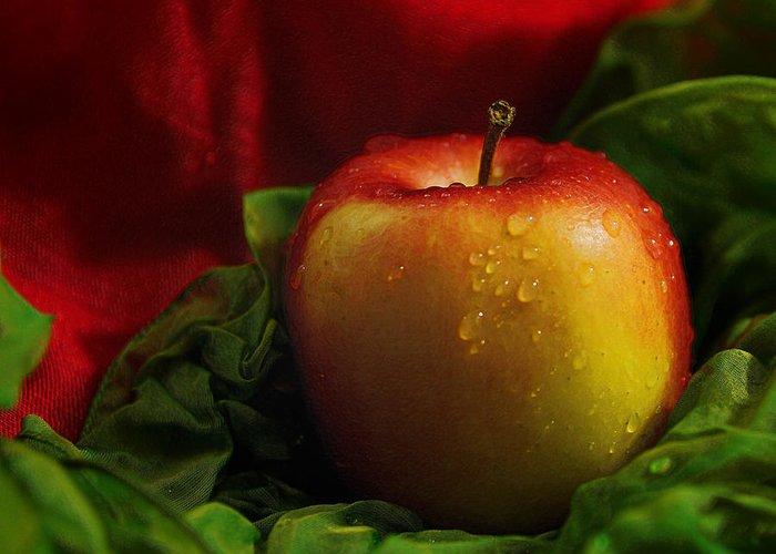 Apple Greeting Card featuring the photograph Fresh Apple On Silk by Wobblymol Davis