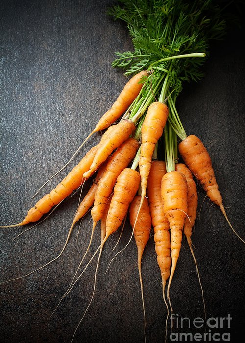 Agriculture Greeting Card featuring the photograph Fresh Carrots by Kati Finell