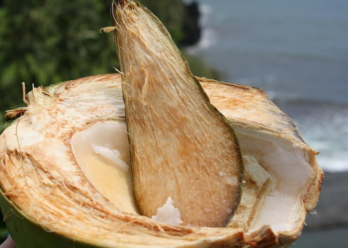 Coconut Greeting Card featuring the photograph Fresh Coconut by Pamela Smith