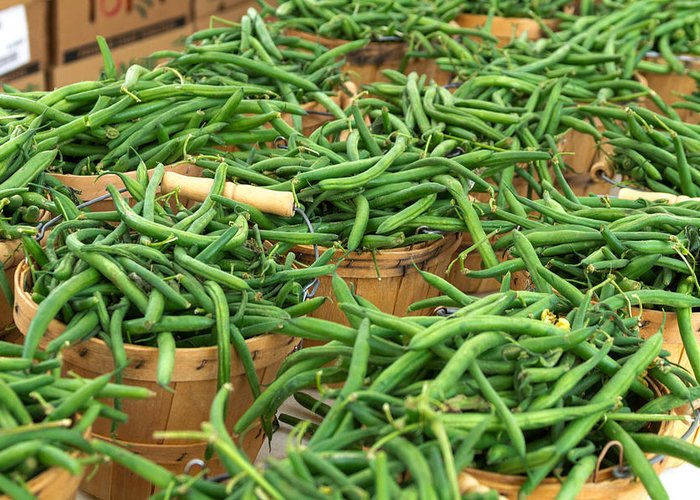 Baskets Greeting Card featuring the photograph Fresh Green Beans In Baskets by Teri Virbickis