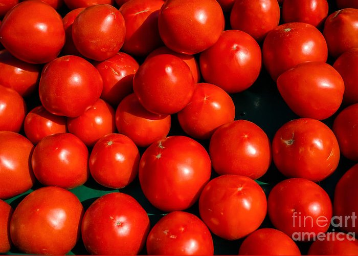 Ripe Greeting Card featuring the photograph Fresh Ripe Red Tomatoes by Edward Fielding