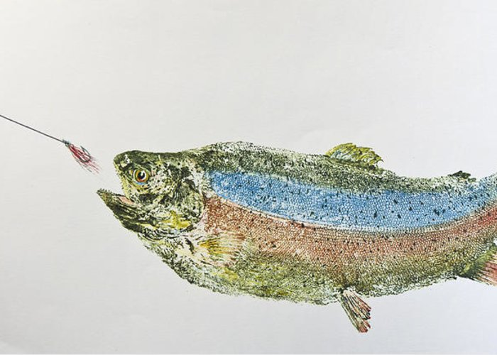 Freshwater Rainbow Trout With Fly Greeting Card featuring the mixed media Freshwater Rainbow Trout With Fly by Nancy Gorr