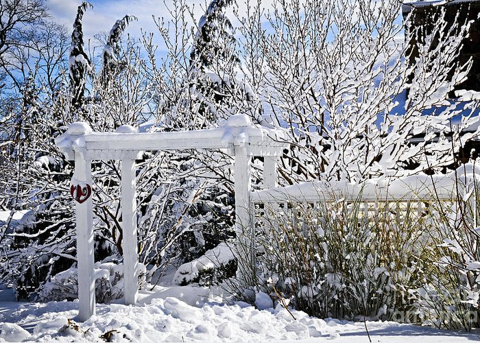 House Greeting Card featuring the photograph Front Yard Of A House In Winter by Elena Elisseeva