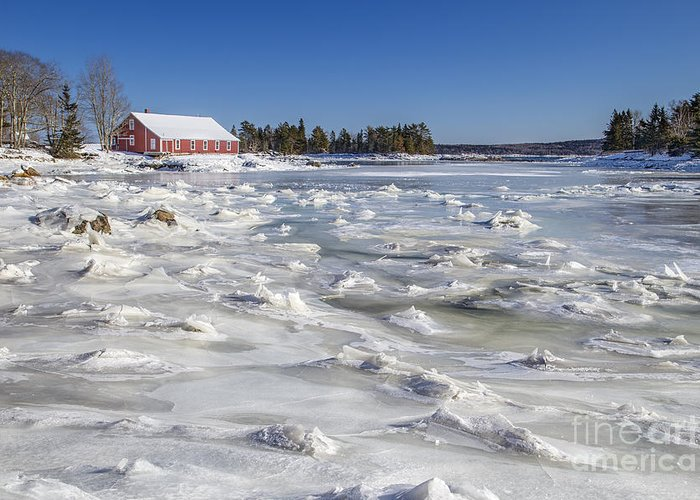 Maine Greeting Card featuring the photograph Frozen by Evelina Kremsdorf