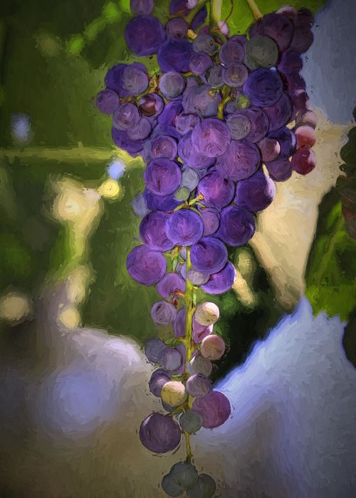 Grape Greeting Card featuring the photograph Fruit Of The Vine by Donna Kennedy