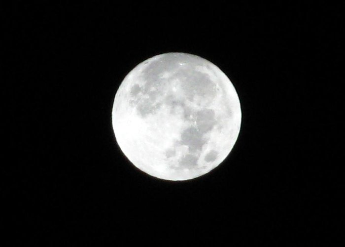 Moon Greeting Card featuring the photograph Full Moon by Rebecca Hassinger