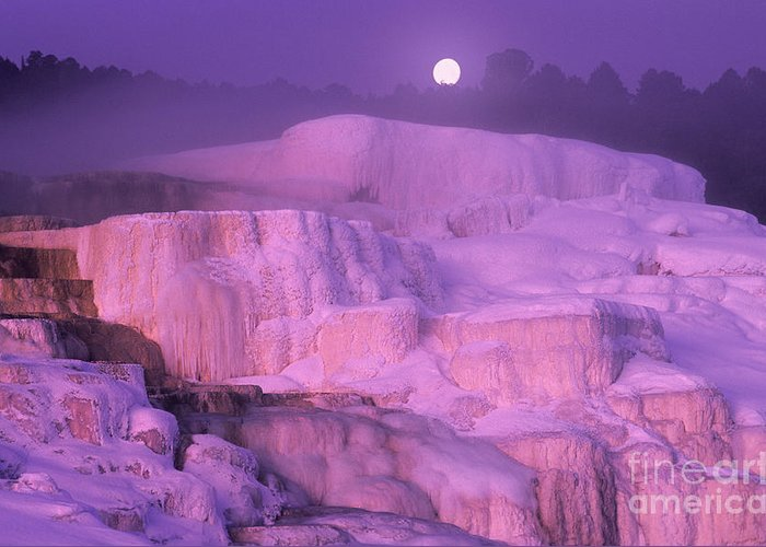 North America Greeting Card featuring the photograph Full Moon Sets Over Minerva Springs On A Winter Morning Yellowstone National Park by Dave Welling