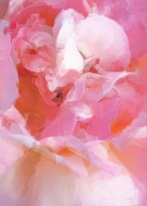 Rose Greeting Card featuring the photograph Garden Ballet by Gwyn Newcombe