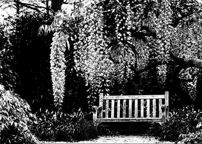 Beatiful Benches Greeting Card featuring the photograph Garden Bench By Zina Zinchik by Zina Zinchik