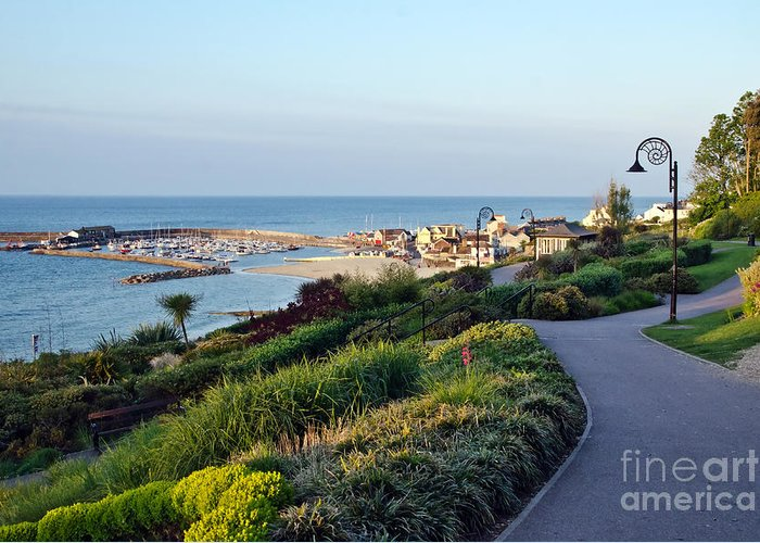 Lyme Regis Greeting Card featuring the photograph Garden Overview - Lyme Regis by Susie Peek