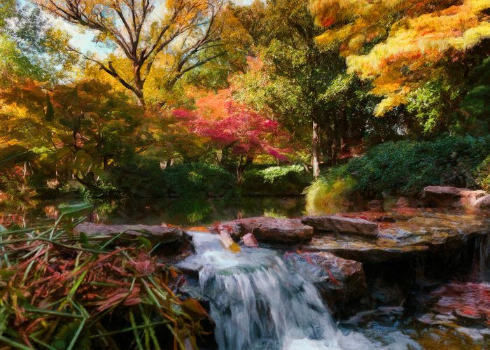Fort Worth Botanical Gardens Greeting Card featuring the photograph Garden Stream by Ted Griffith