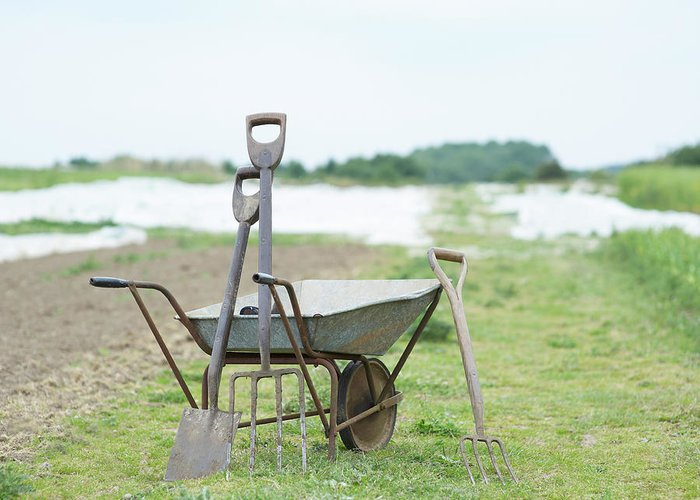 Grass Greeting Card featuring the photograph Gardening Tools And Wheel Barrow On by Dougal Waters