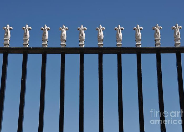 Gate Greeting Card featuring the photograph Gate by Luis Alvarenga