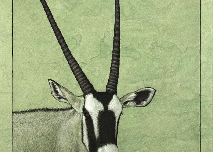 Gemsbok Greeting Card featuring the painting Gemsbok by James W Johnson
