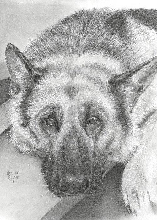 German Shepherd Greeting Card featuring the drawing German Shepherd by Heather Gessell