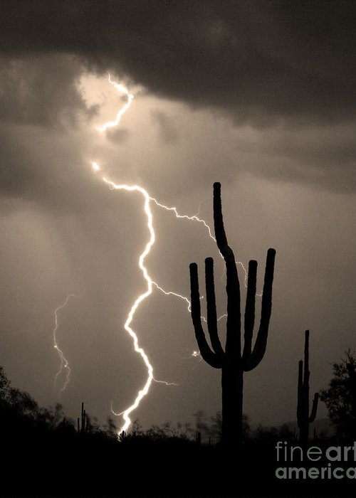 Weather Greeting Card featuring the photograph Giant Saguaro Cactus Lightning Strike Sepia by James BO Insogna