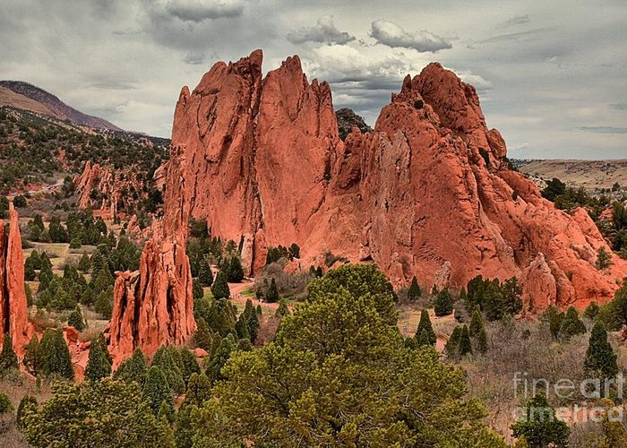 Garden Of The Gods Greeting Card featuring the photograph Giants Among The Trees by Adam Jewell