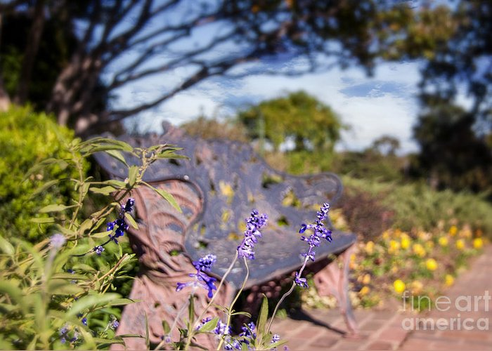 Tulsa Greeting Card featuring the photograph Gilcrease House Garden Flower by Tamyra Ayles