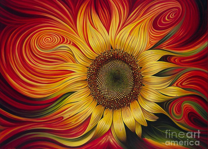 Solar Flare Greeting Cards