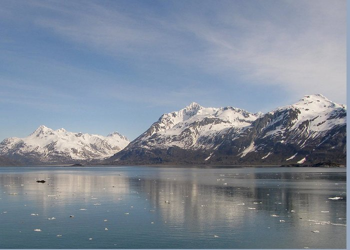 Alaska Greeting Card featuring the photograph Glacier Bay by Larry Marano