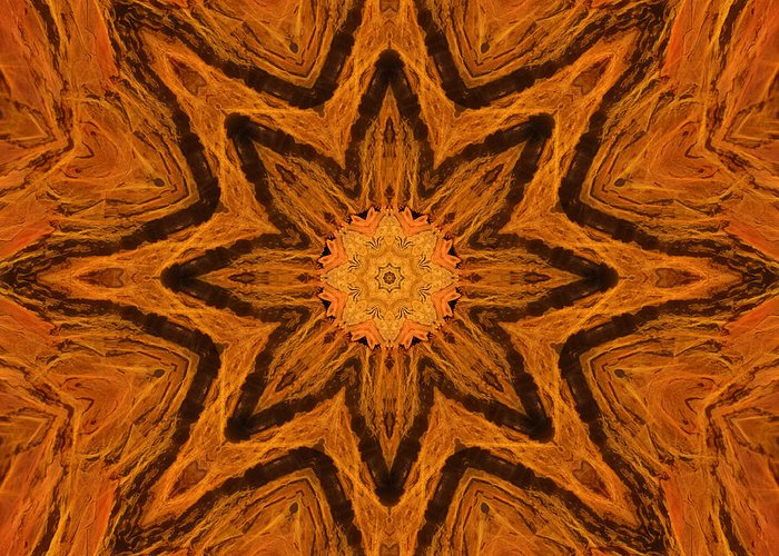 Star Greeting Card featuring the photograph Glowing Pine Flower Mandala by Beth Sawickie