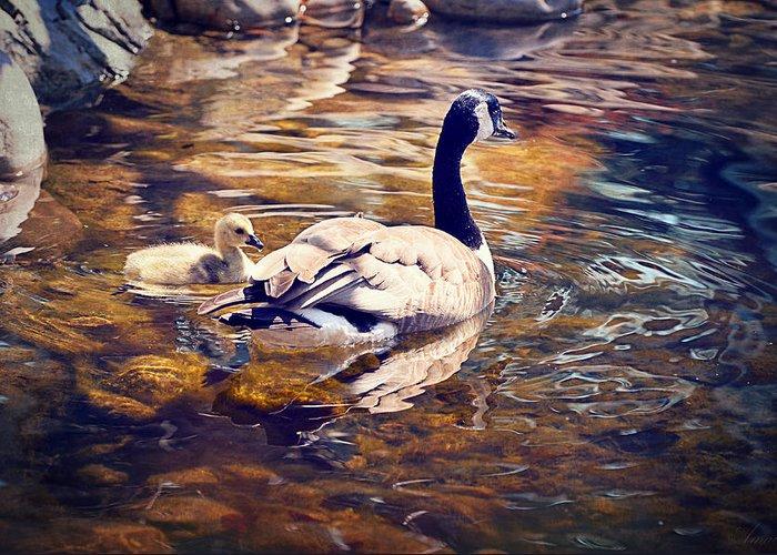 Mother Goose Digital Art Greeting Cards
