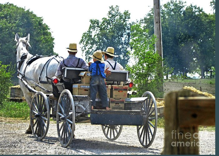 Mennonite Greeting Card featuring the photograph Going To Market by Paul Mashburn
