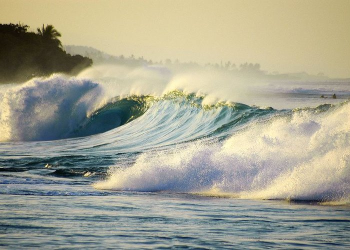 Surf Greeting Card featuring the photograph Gold Crested Surf by Lori Seaman