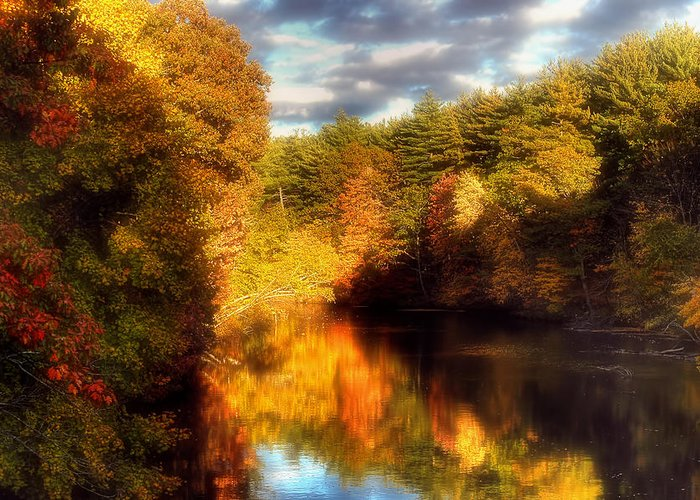 Orange Greeting Card featuring the photograph Golden Autumn by Joann Vitali
