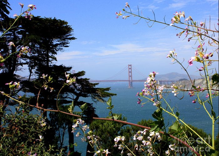 San Francisco Greeting Card featuring the photograph Golden Gate Bridge And Wildflowers by Carol Groenen