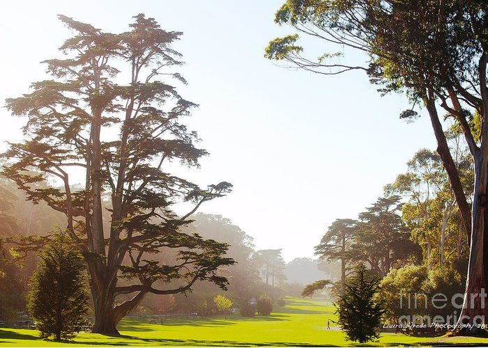 San Francisco Images Greeting Card featuring the photograph Golden Gate Park San Francisco by Artist and Photographer Laura Wrede