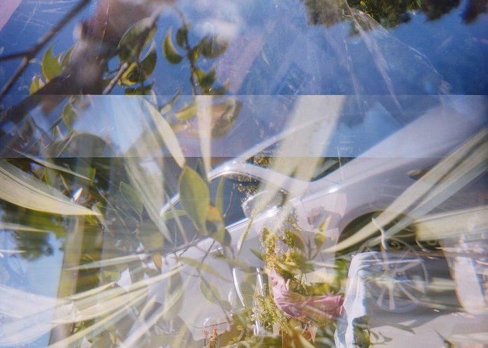 Holga Greeting Card featuring the photograph Golden Mean Holga Garden 1 by Carolina Liechtenstein