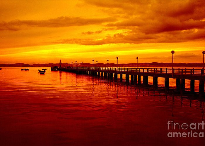Golden Nature Greeting Card featuring the photograph Golden Nature by Boon Mee