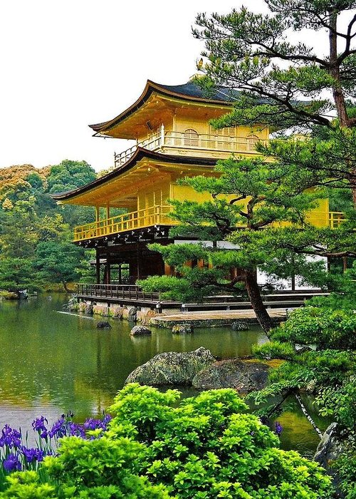 Asia Greeting Card featuring the photograph Golden Pavilion - Kyoto by Juergen Weiss