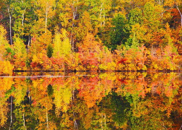 Landscape Greeting Card featuring the photograph Golden Reflection by Roger Becker