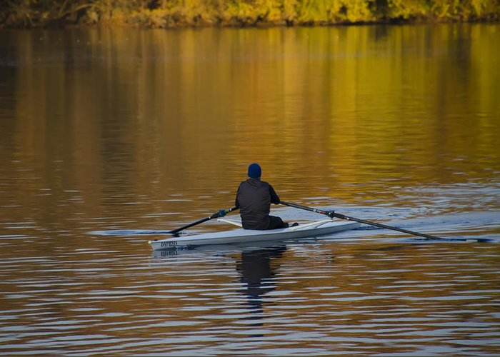 Golden Greeting Card featuring the photograph Golden Rower by Bill Cannon