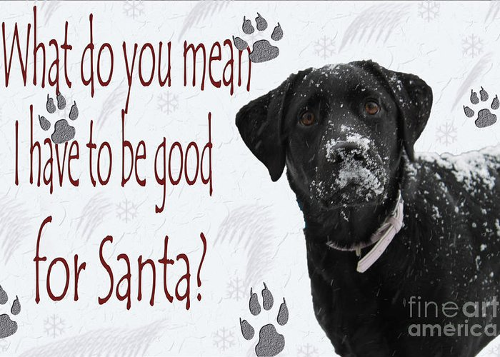 Cathy Beharriell Greeting Card featuring the photograph Good For Santa by Cathy Beharriell