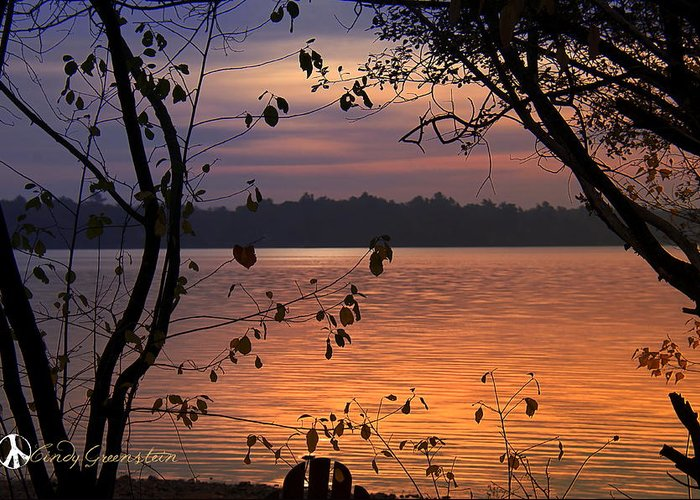 Lake Greeting Card featuring the photograph Goodnight Lake by Cindy Greenstein