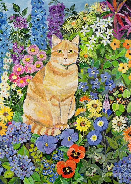 Pansy; Delphinium; Brown-eyed Susan; Lupin; Periwinkle; Ginger Tom Greeting Card featuring the painting Gordon S Cat by Hilary Jones