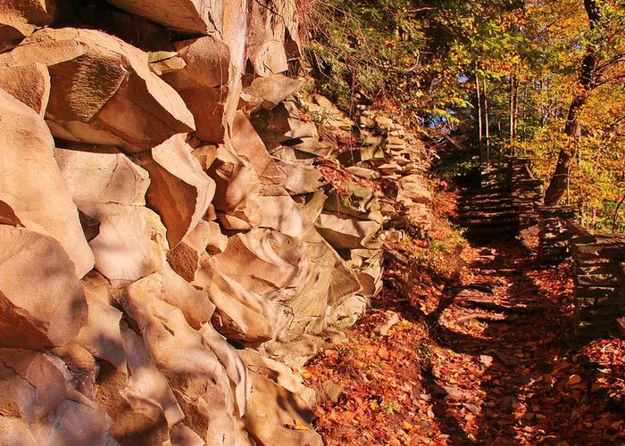 Rock Greeting Card featuring the photograph Gorge Trail Wall by Laurie Tracy