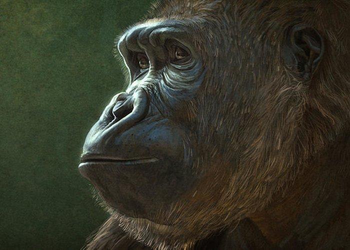 Gorilla Digital Art Greeting Cards