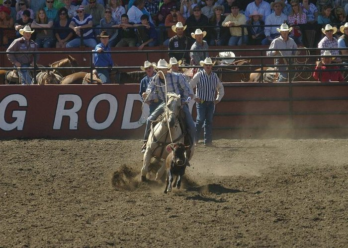 Calf Roping Greeting Card featuring the photograph Got Em by Jeff Swan