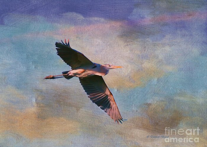 Blue Heron Greeting Card featuring the photograph Grace Of The Wild by Deborah Benoit