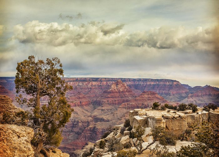 Arizona Greeting Card featuring the photograph Grand Canyon by Colin and Linda McKie