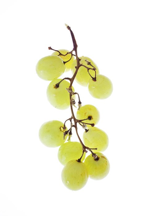 Grape Greeting Card featuring the photograph Grape by Joy Hsieh