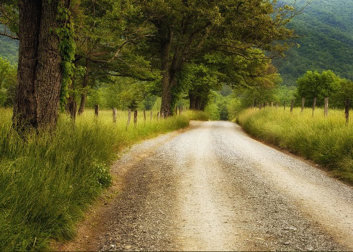 Cades Cove Greeting Card featuring the photograph Gravel Road In The Smokies by Andrew Soundarajan